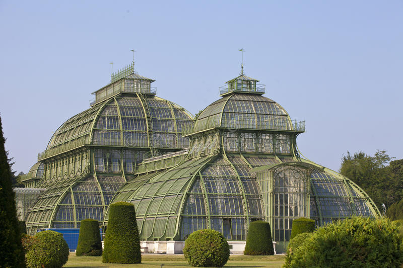 palm house in Vienna, Austria royalty free stock photo