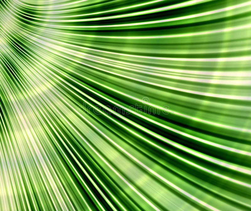 Download Palm leaf stock illustration. Image of textures, shade - 4464477