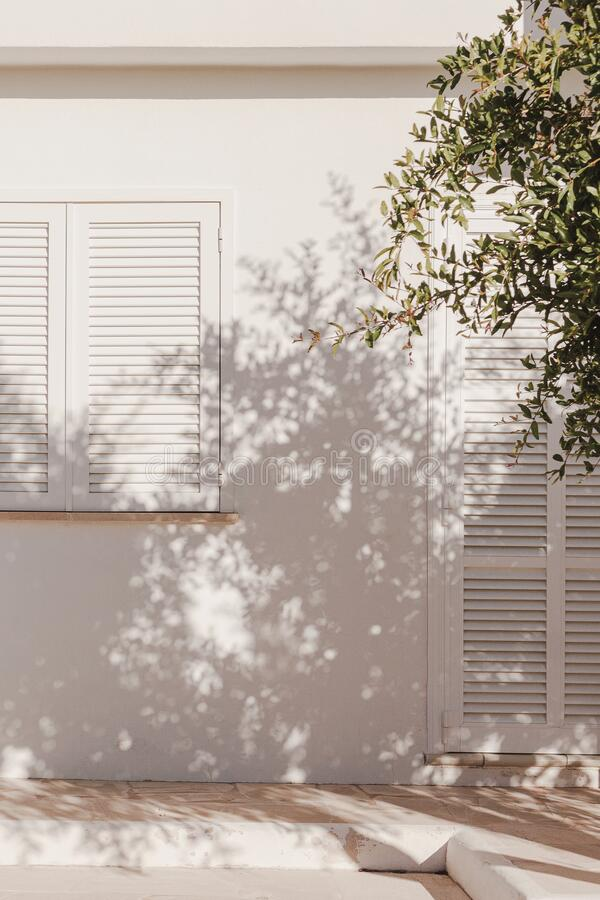 Free Palm Leaf Beautiful Shadows On The Wall. Creative, Minimal, Bright And Airy Styled Concept Stock Images - 181810794