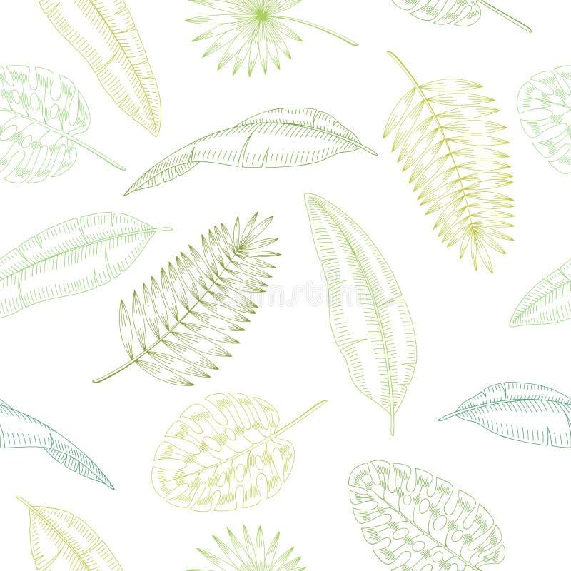 Palm leaf graphic green color seamless pattern sketch illustration vector royalty free illustration