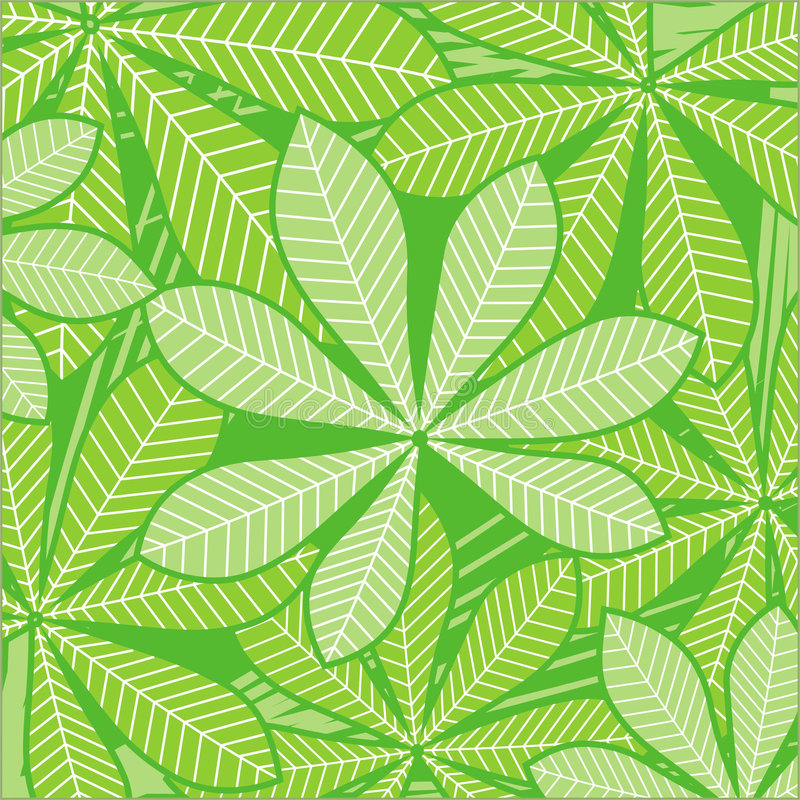Palm leaves on green. Pattern of tropical plants leaves on green background