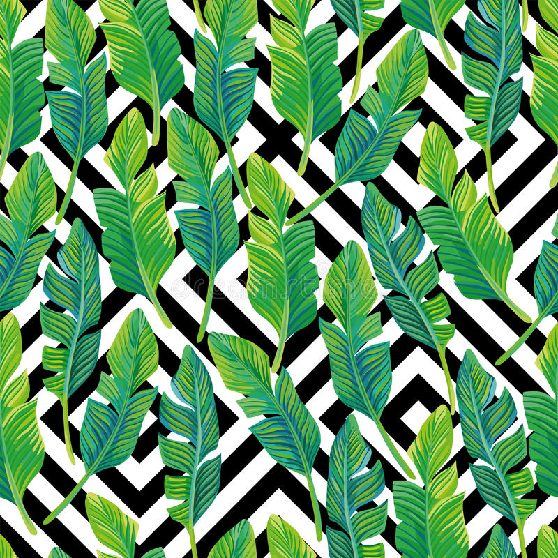 Download Palm Leaves Seamless Pattern Black White Geometric Background Stock Vector