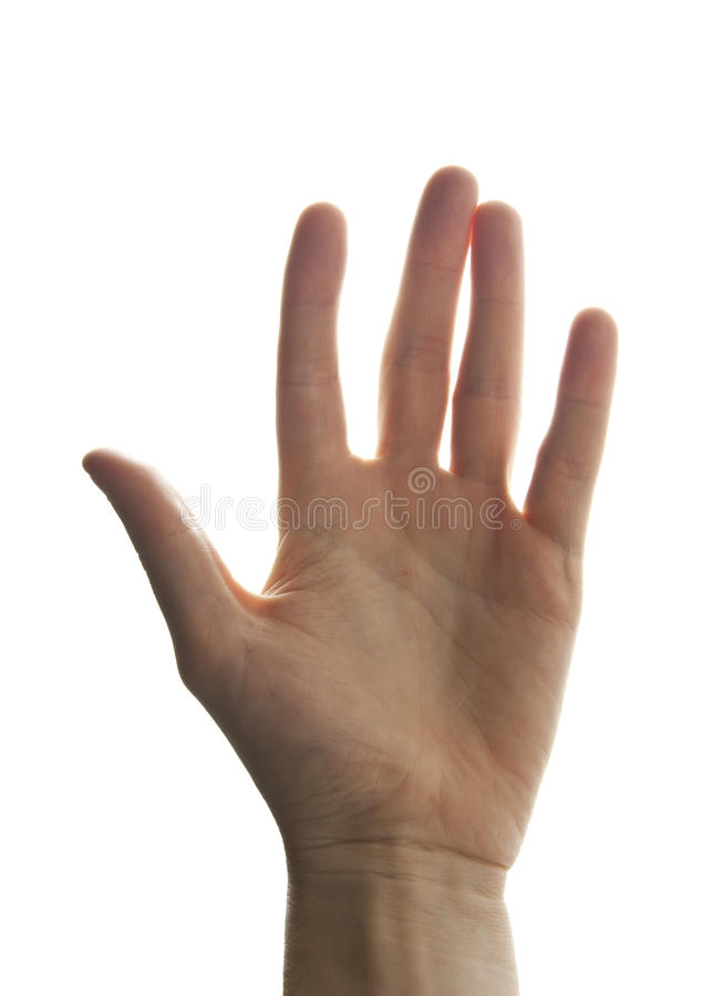 Palm of man's hand stock photo
