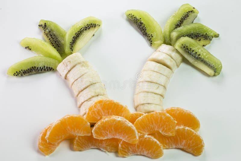 Palm met vruchten wordt gemaakt die stock foto's