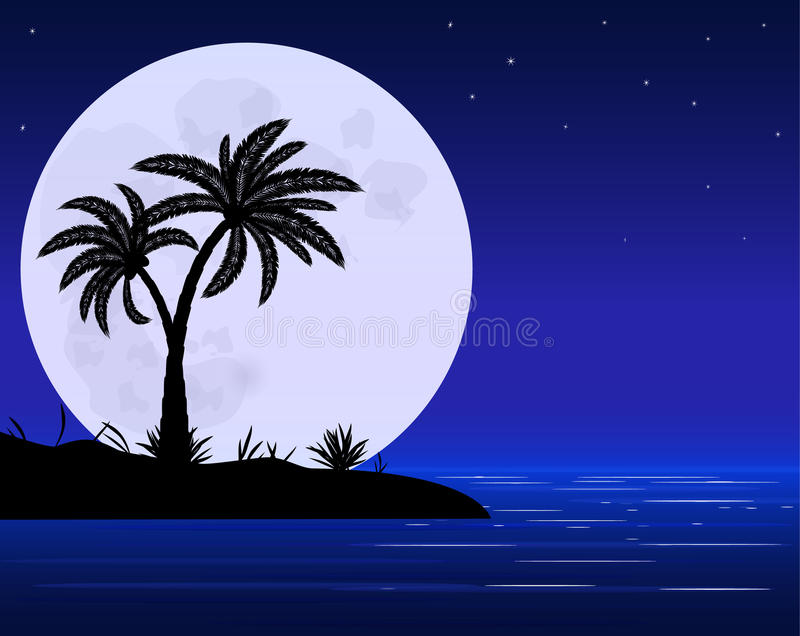 Palm and moon stock illustration