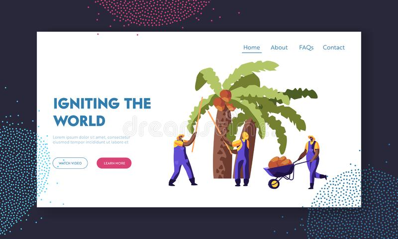 Palm Oil Producing. Workers Collect Coconuts from Palm Tree, Seasonal Work, Laborers Taking Crop on African or Asian Plantation. Website Landing Page, Web Page royalty free illustration