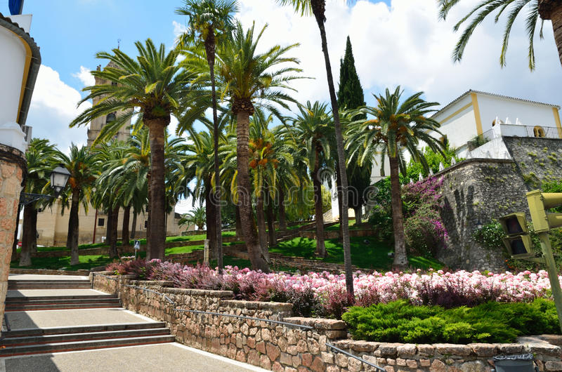 Download Palm Park In The Spanish Town Stock Photo - Image of flowering, park: 28012022