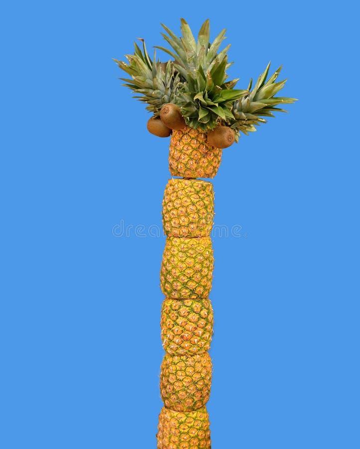 Palm pineapples and kiwi stock photos