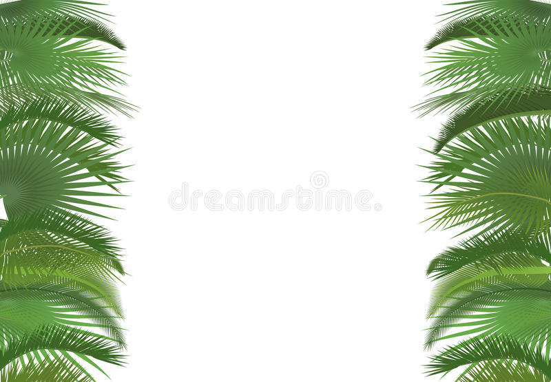 Palm plant tree leaves background template exotic tropical download palm plant tree leaves background template exotic tropical festival selebration greeting card palm pronofoot35fo Image collections