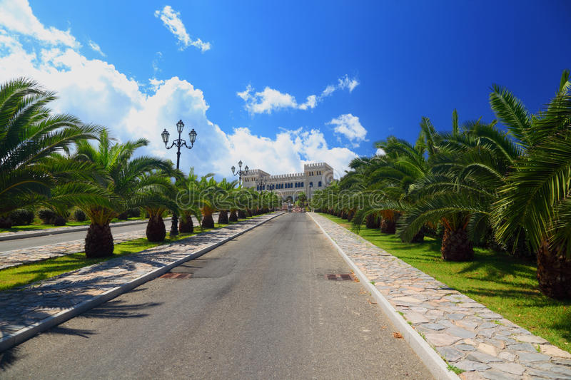 Download Palm Planted In Row Along Mall Leading To Castle Stock Photo - Image: 17887874