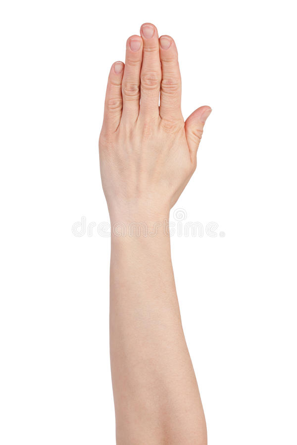 Palm with pressed fingers stock image