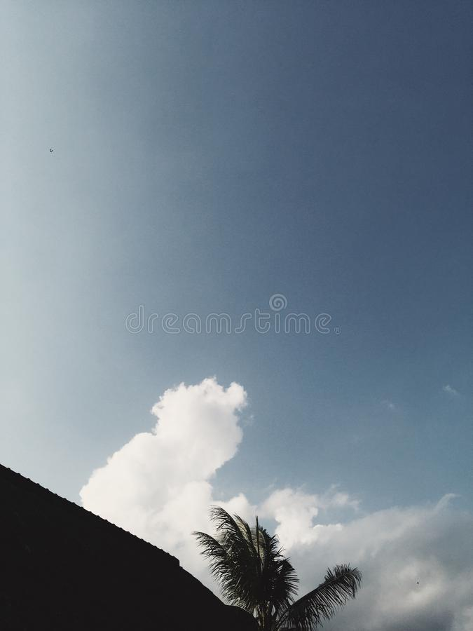 Palm and roof silhouette at blue cloudy sky at background stock photos