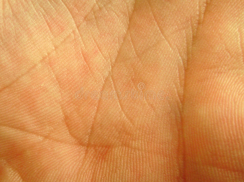 Palm skin close up royalty free stock images