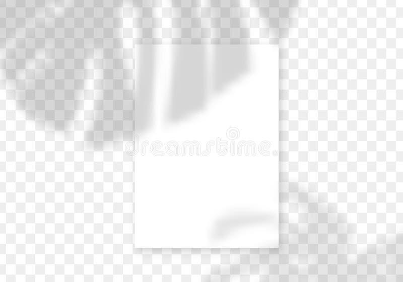 Palm-skuggöverlägg Vektortransparenta palmblad överlägg vektor illustrationer