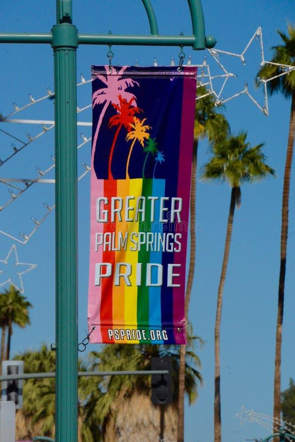 Palm Springs dumy sztandar obraz royalty free