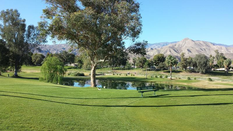 Palm Springs Golf royalty free stock photography