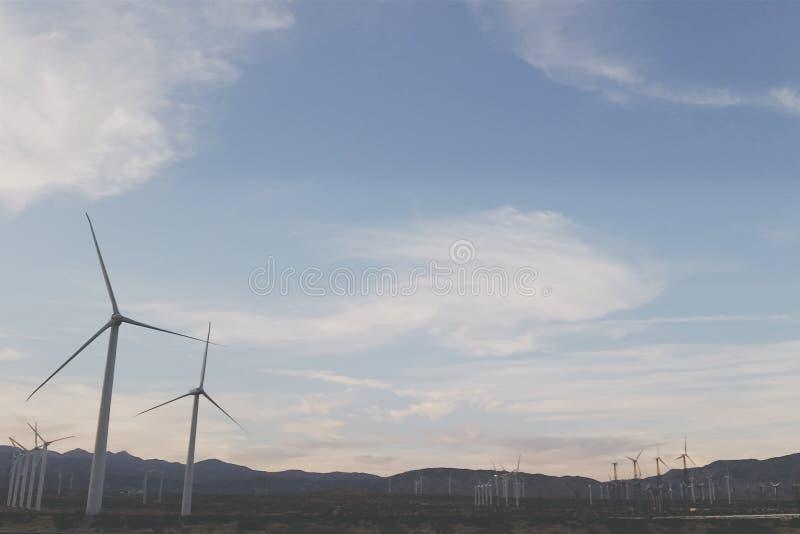 Palm- Springwindmühlen lizenzfreie stockfotografie