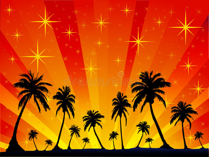 Palm Stars Stock Photo