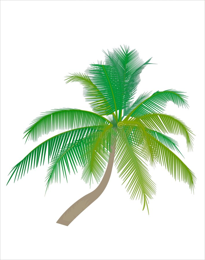 Download Palm tree stock vector. Image of mood, harmony, light - 2177841