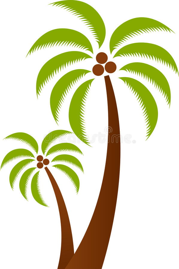 Palm tree. Illustration art of a palm tree with isolated background stock illustration