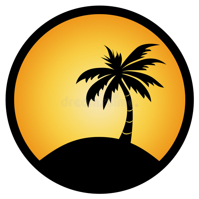 Free Palm Tree Stock Images - 5591124