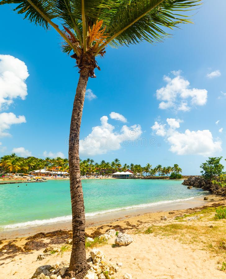 Guadeloupe Beach: Paradise Tropical Beach And