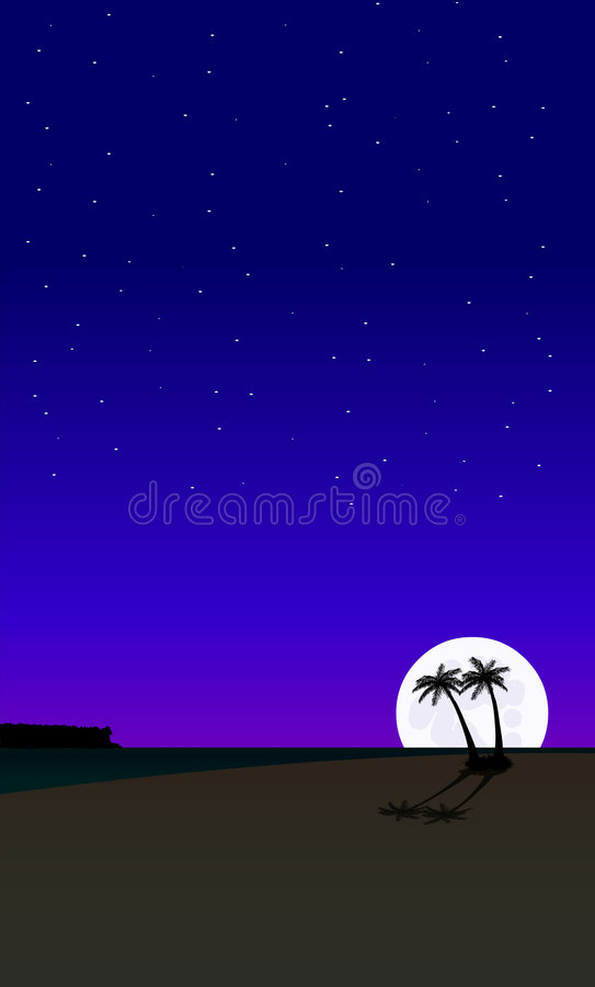 Free Palm Tree Beach At Night 2 Stock Image - 1073371