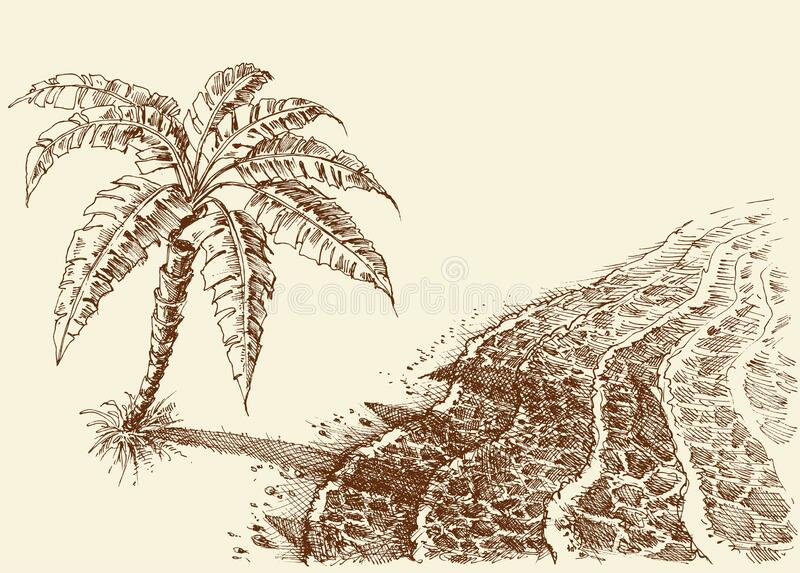 Palm tree on a beach hand drawing. Sea shore seen from above royalty free illustration