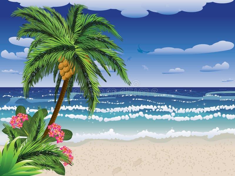 Palm tree on beach vector illustration