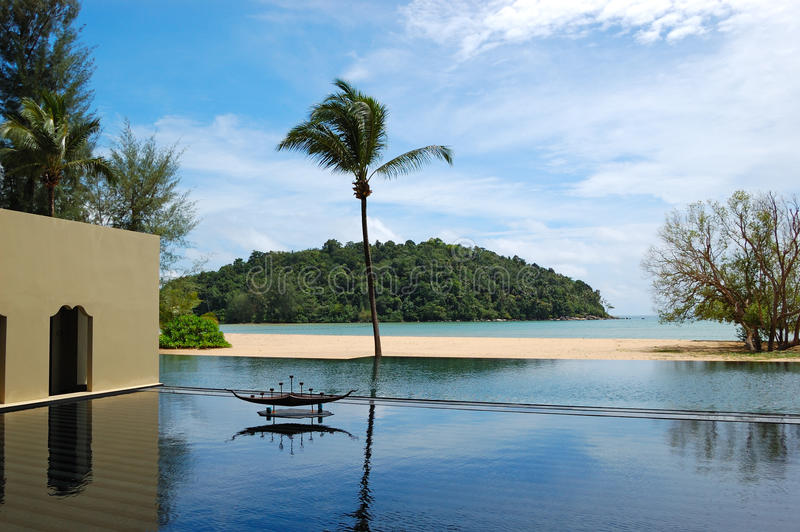 Download Palm Tree At The Beach And Swimming Pool Stock Image - Image: 16255257