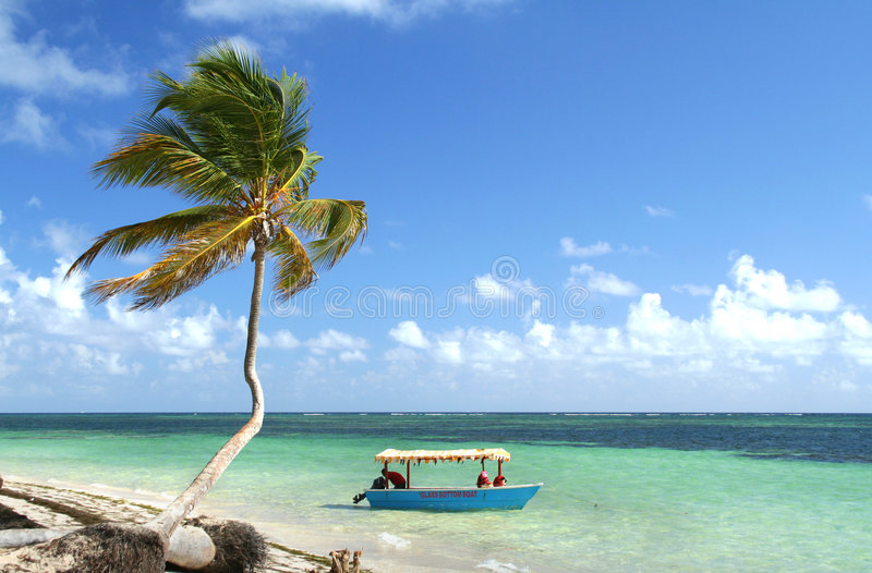 Palm tree and boat on tropical beach stock photos