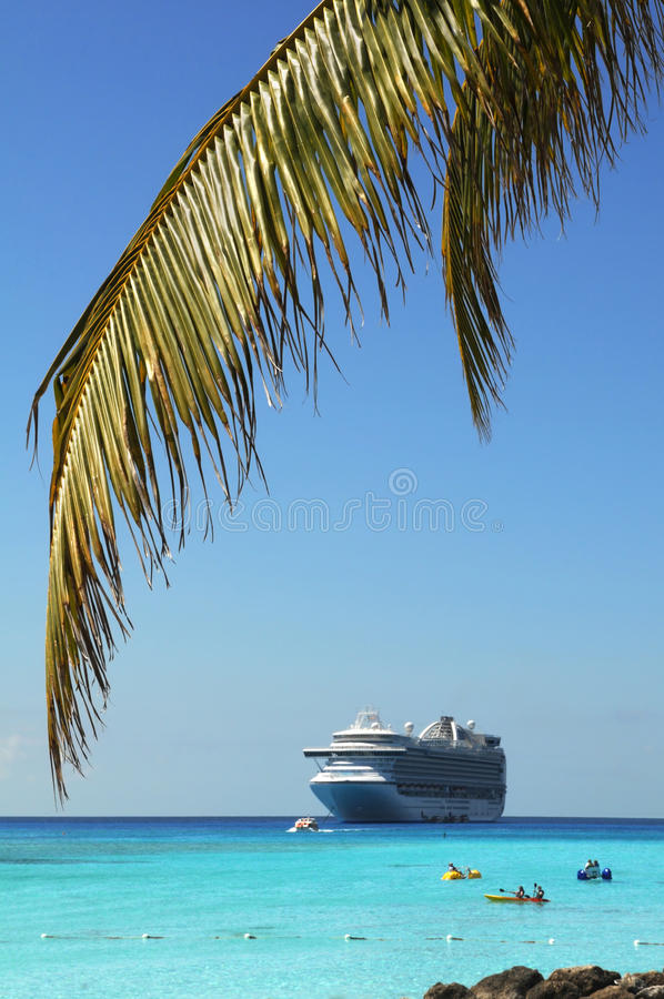 Palm Tree Branch And Cruise Ship Royalty Free Stock Photos