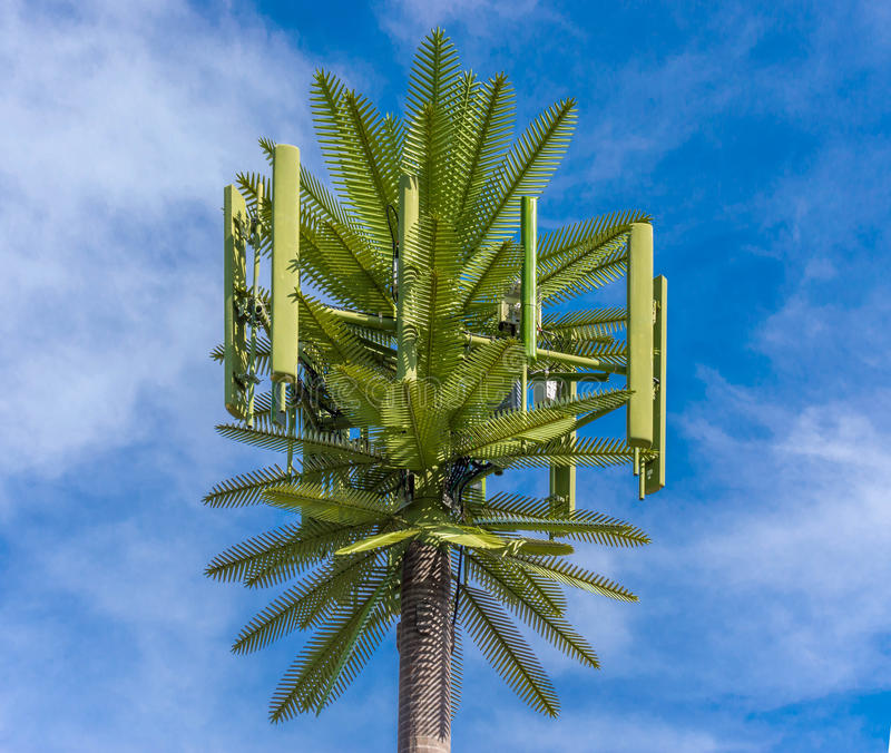 Palm Tree Cell Antenna stock photography