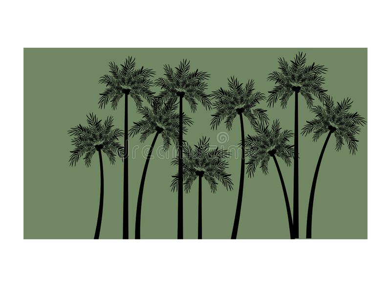 Palm tree with coconut in white background. Vector illustration design royalty free illustration