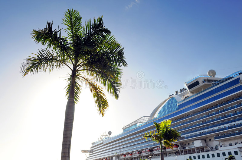 Palm Tree and Cruise Ship stock photography