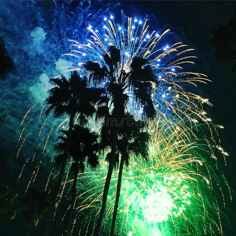Palm Tree Fireworks. Palm trees silhouetted by blue and green fireworks royalty free stock photography