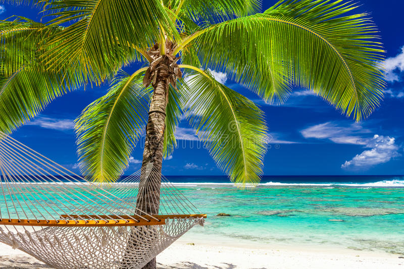 A palm tree with a hammock on the beach of Rarotonga, Cook Islands stock photography