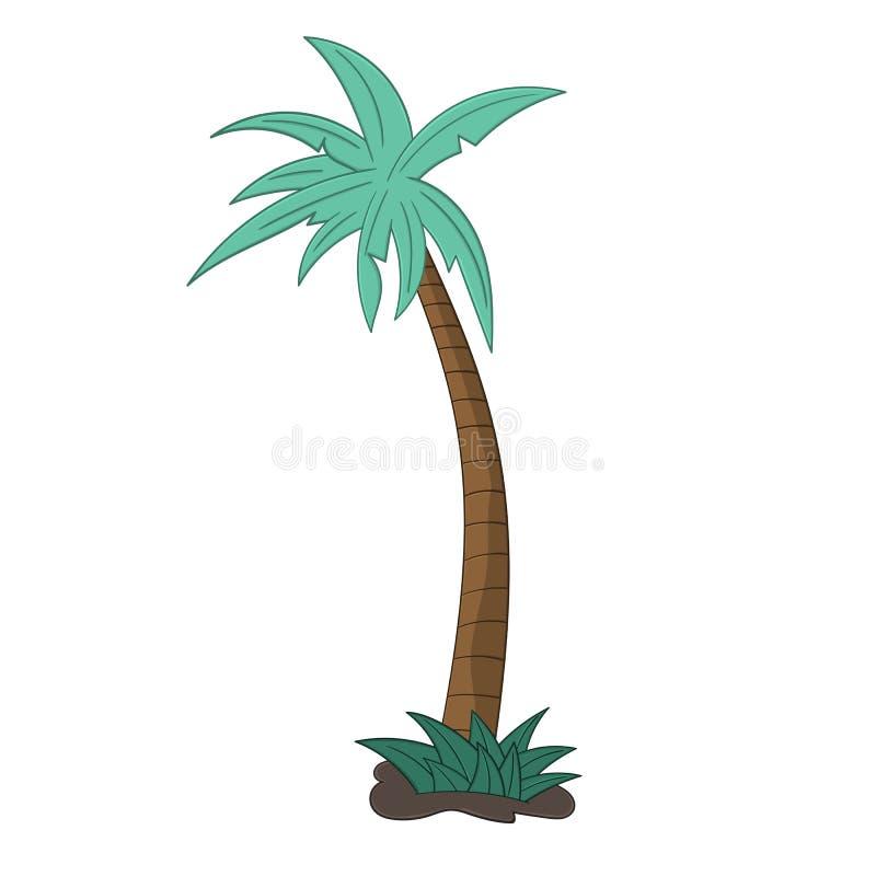 Palm tree isolated illustration on white background in cartoon style. Design element stock illustration