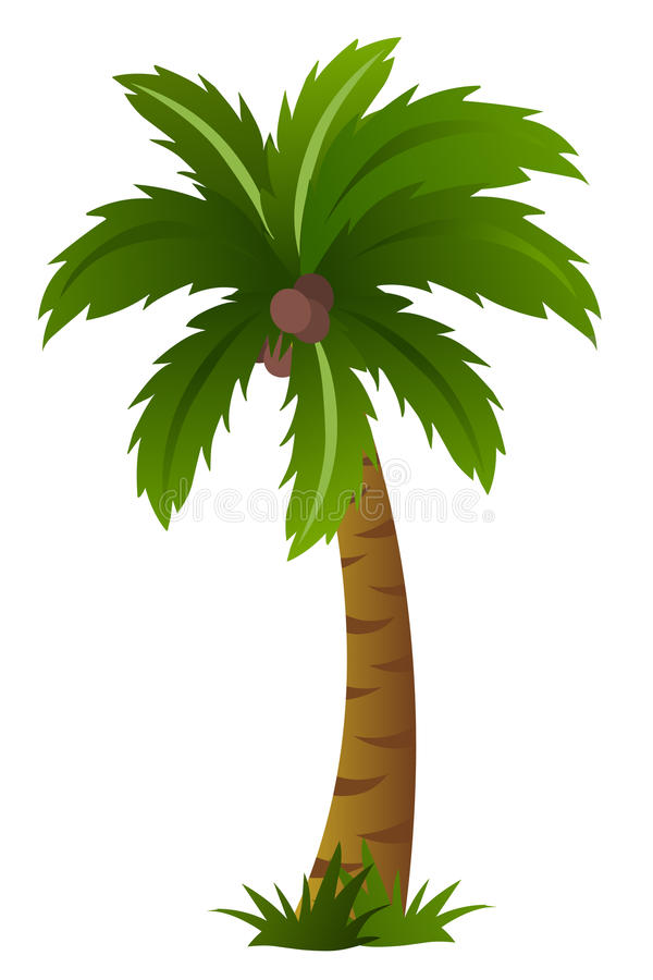 Palm tree isolated on white background stock illustration