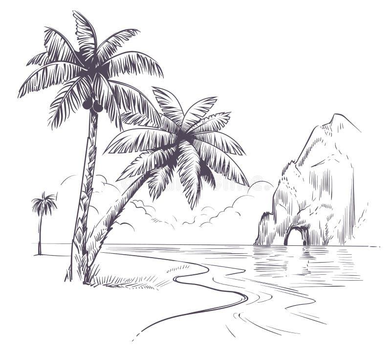 Free Palm Tree Landscape. Sketch Tropical Palms Ocean Coast, Exotic Island Hawaii Natura Summer Vacation Poster Hand Drawn Stock Photo - 181820120