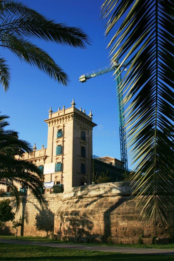 Palm tree leaf spanish spring bokeh, Valencia stock image
