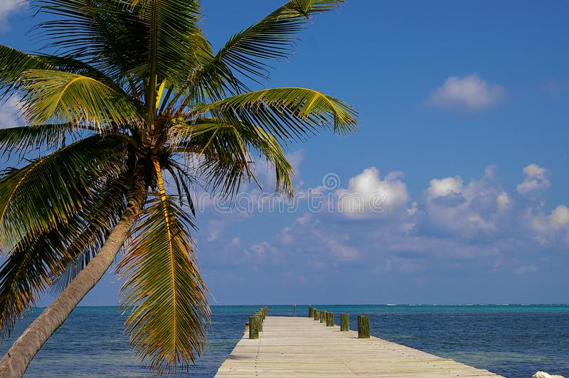 Ambergris Caye Belize royalty free stock photos