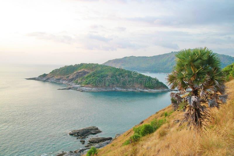 Download Palm Tree, Phromthep Cape Viewpoint , Phuket ,Thai Stock Photo - Image: 34806234