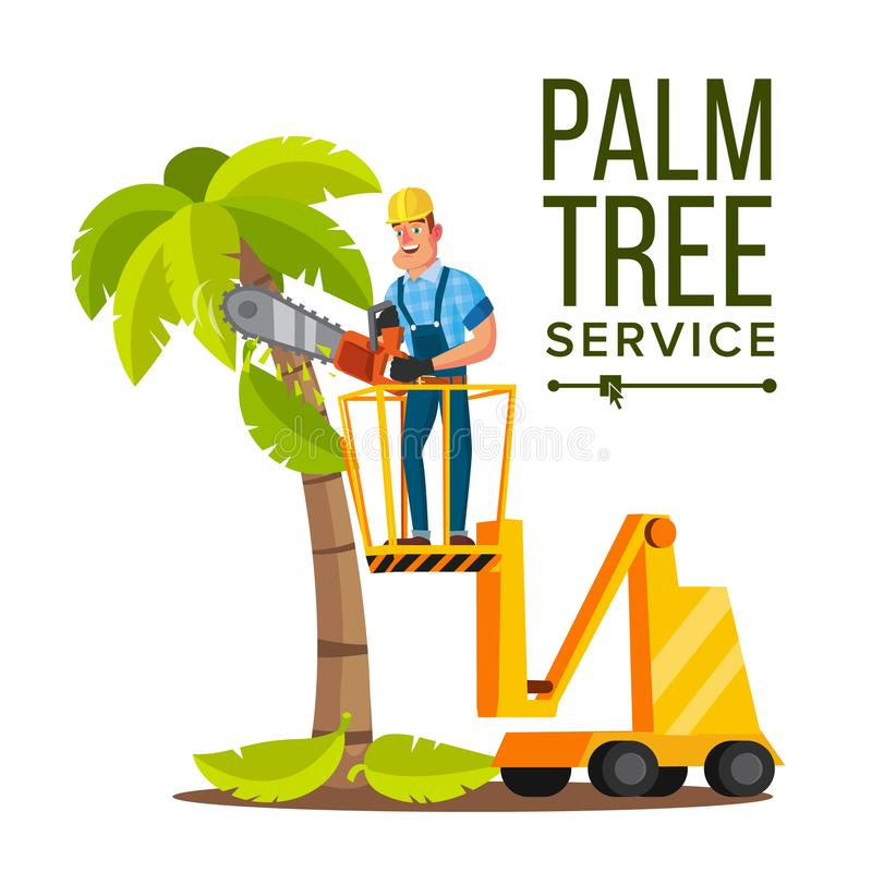 Palm Tree Care Vector. Trimming Tree Or Removal To Tree Pruning. Isolated On White Cartoon Character Illustration stock illustration