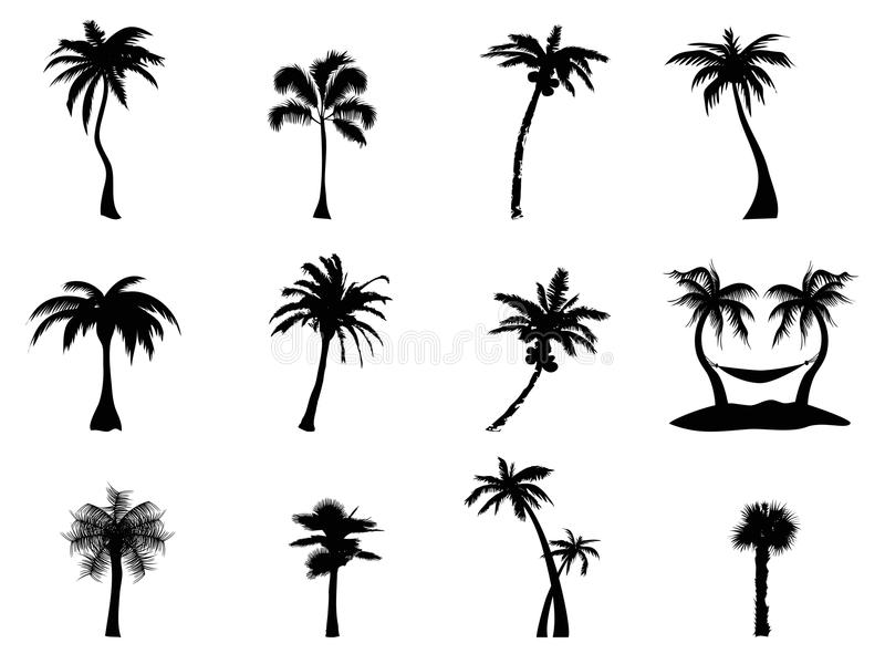 Palm tree Silhouette stock illustration