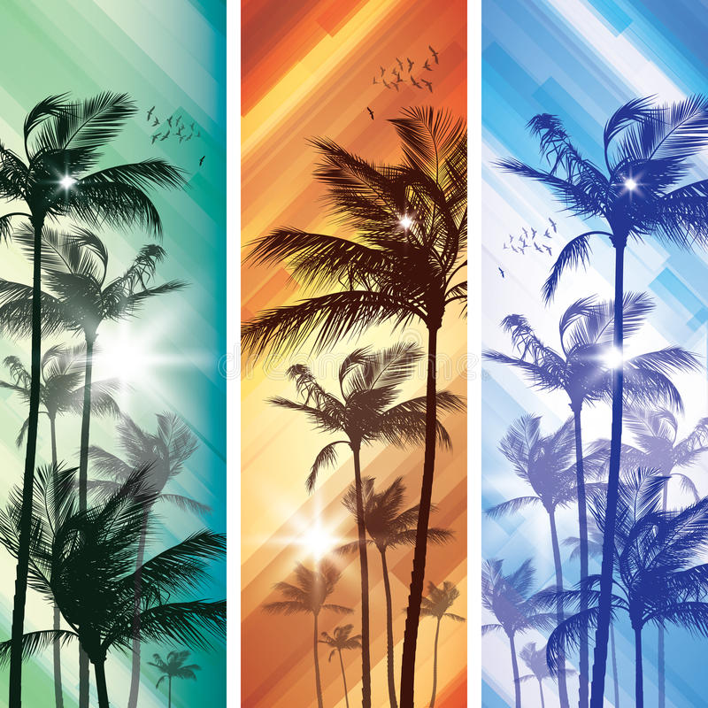 Download Palm tree at sunset stock vector. Image of banner, palm - 24703358