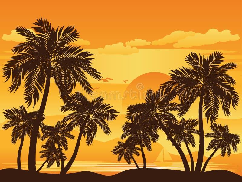 Palm Tree at Sunset vector illustration
