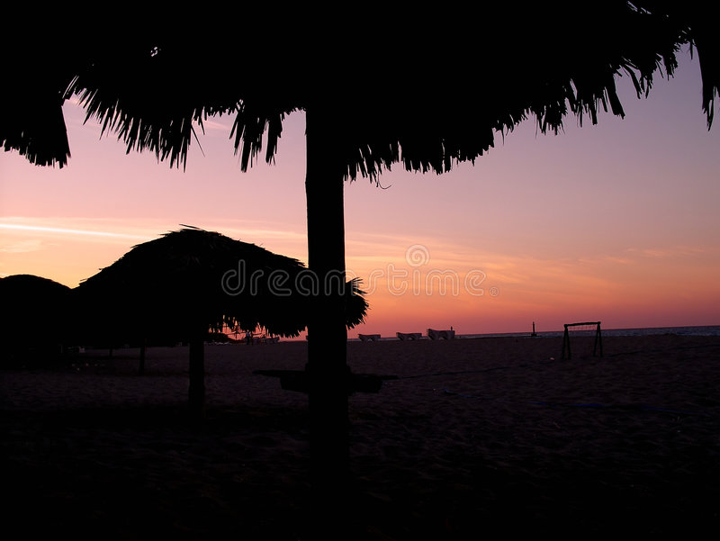 Palm tree umbrelas stock photos