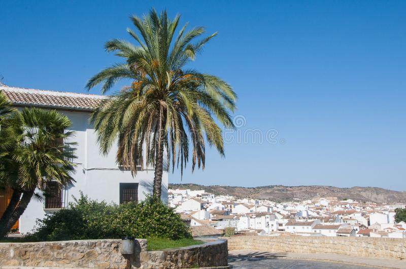 Palm tree and white house on the background of Antequera. White houses of Spanish town. stock photography