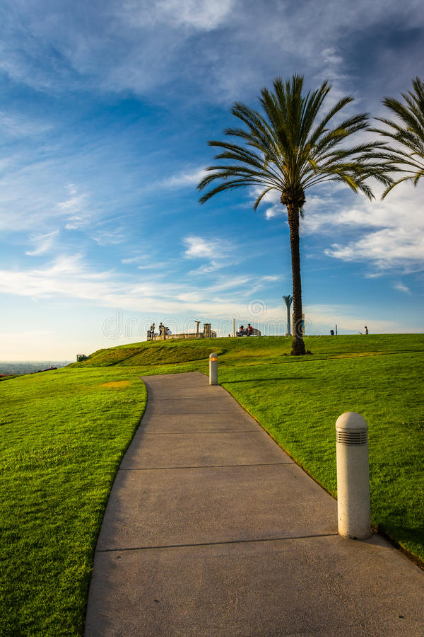 Free Palm Trees And Path At Hilltop Park, In Signal Hill Royalty Free Stock Photos - 51549198